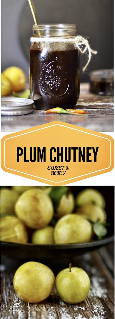 Chutney, Condiment, Relish, Side, Spicy. Sweet, Plum, Ginger, Cinnamon, Winter Chutney