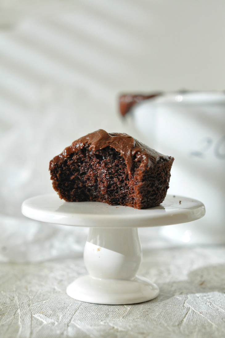 Microwave_Chocolate_Cake_for_One3